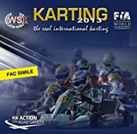 Karting Season Photographic Review 2013: CIK-FIA and WSK Official Book