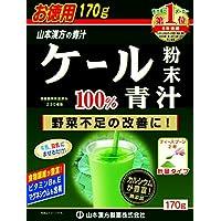 山本漢方 ケール粉末100% 青汁 170g