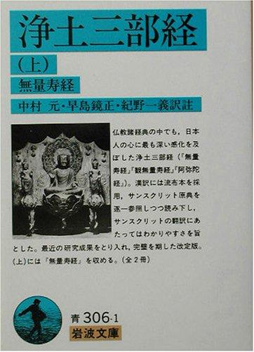 浄土三部経〈上〉無量寿経 (岩波文庫)の詳細を見る