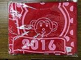 HKT48 公式グッズ マフラータオル 2016年福袋