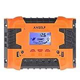 Anself 50A/60A 12V 24V LCD ソーラー充電コントローラ パネルバッテリーレギュレータ 自動過負荷保護 温度補償 デュアルUSB&DCスイッチ