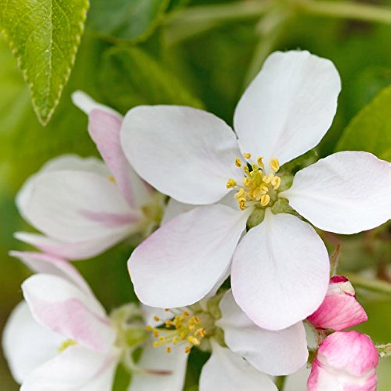 蜂構造的ミットアロマフレグランスオイル アップルブロッサム(Apple Blossom)