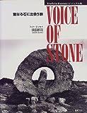 ビジュアル版 VOICE OF STONE―聖なる石に出会う旅 (Truth In Fantasyビジュアル版)