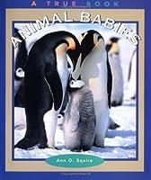 Animal Babies (True Books: Animals)