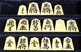 ★御蔵島産本黄楊駒/盛揚 香月作/錦旗 最高級将棋駒 3点セット (桐平駒箱・駒袋付) 盛り上げ駒 梅商本榧碁盤店
