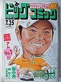 ビッグコミック 2010年 07月 25日号 No.14 通巻No.1197 [雑誌]