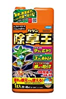 カダン 除草剤 ストレートタイプ ザッソージエース 1L