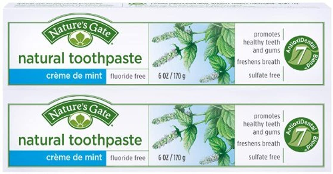 分悪意のある願望Toothpaste-Creme De Mint Tube - 6 oz - Paste by Nature's Gate [並行輸入品]