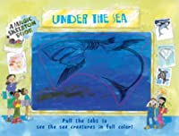 Under the Sea: A Magic Skeleton Book (Pinwheel)