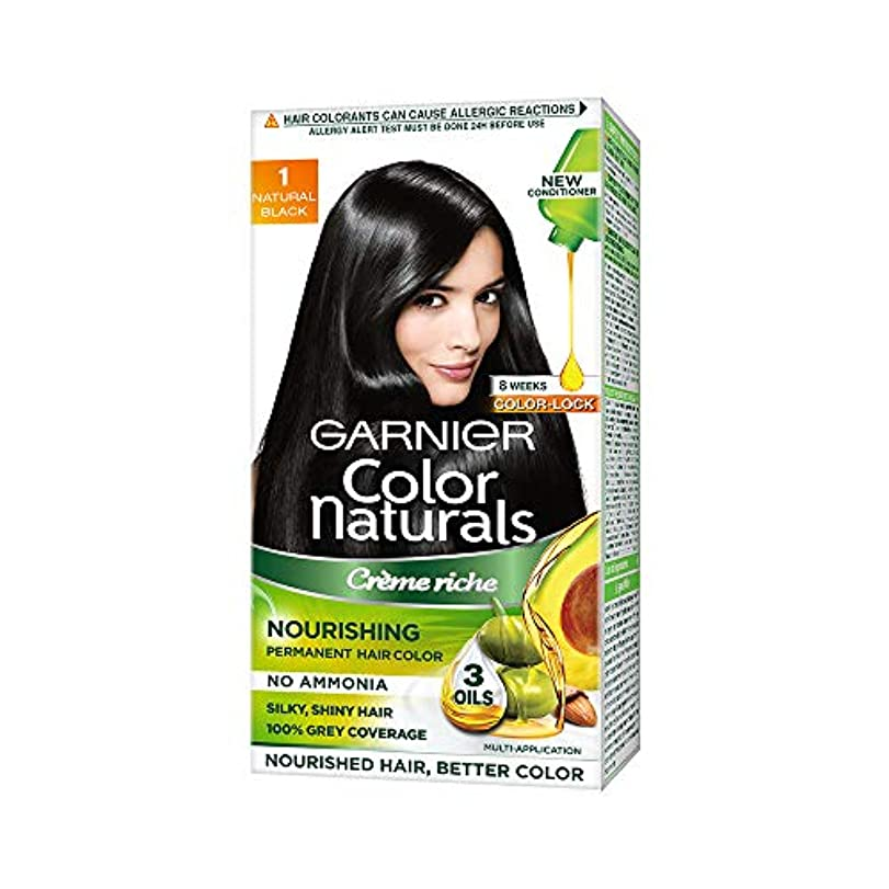 義務付けられた住むブラウンGarnier Color Naturals, Shade 1, Natural Black (70 ml + 60 gm)
