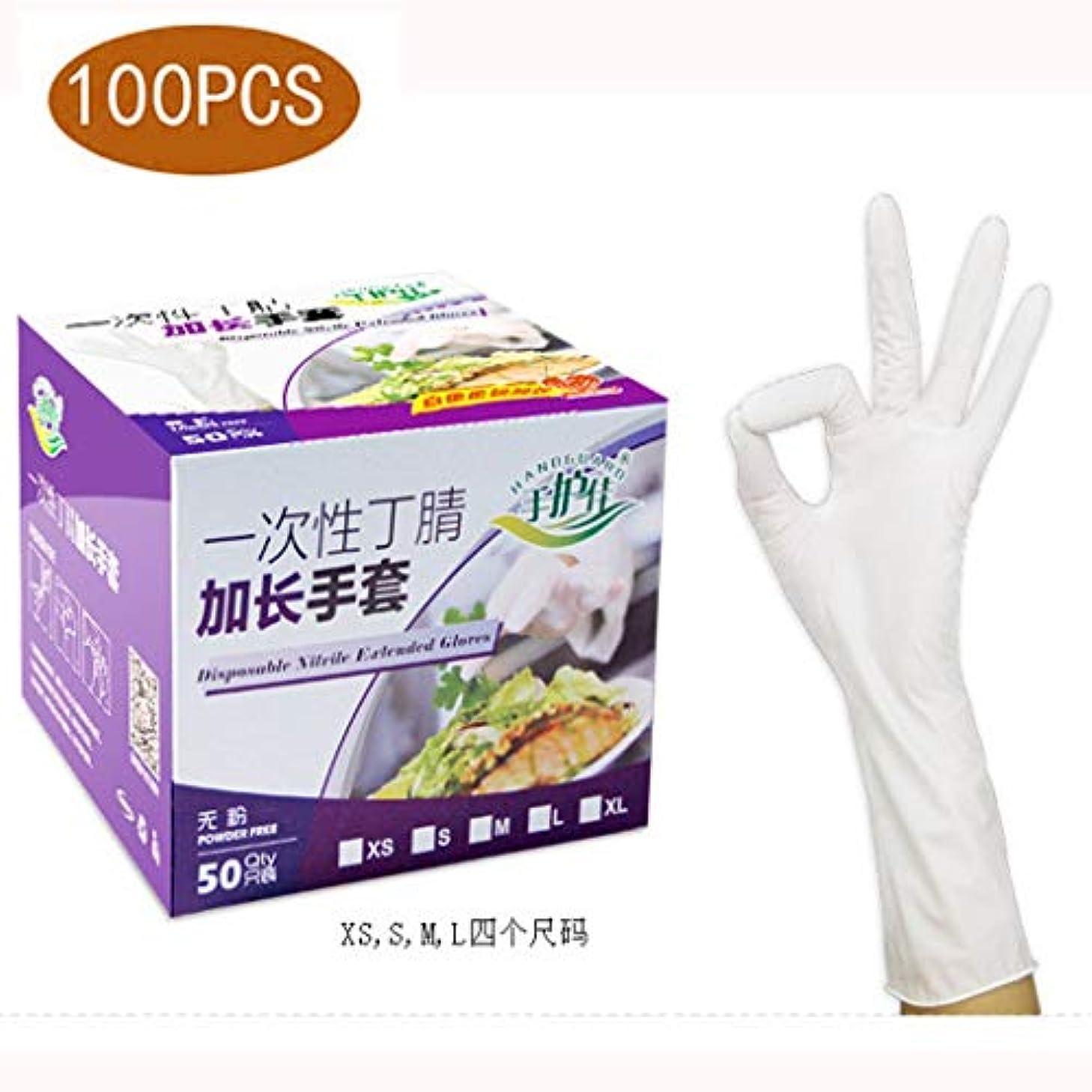 ニトリル手袋ビニール試験使い捨て手袋ゴム研究所労働保険と延長、5ミル、ゴム労働保護美容院ラテックスフリー、パウダーフリー、両手利き、100個 (Size : L)