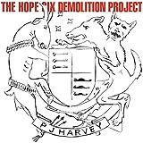 ザ・ホープ・シックス・デモリッション・プロジェクト