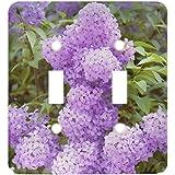 3drose LLC lsp 72198_ 2オーストリア、ザルツブルグStadt、ザルツブルク、ライラックflowers-eu03len0052Lisa S Engelbrechtダブル切り替えスイッチ