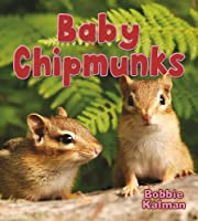 Baby Chipmunks (It's Fun to Learn About Baby Animals)