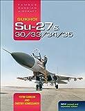 Sukhoi Su-27 & 30/33/34/35