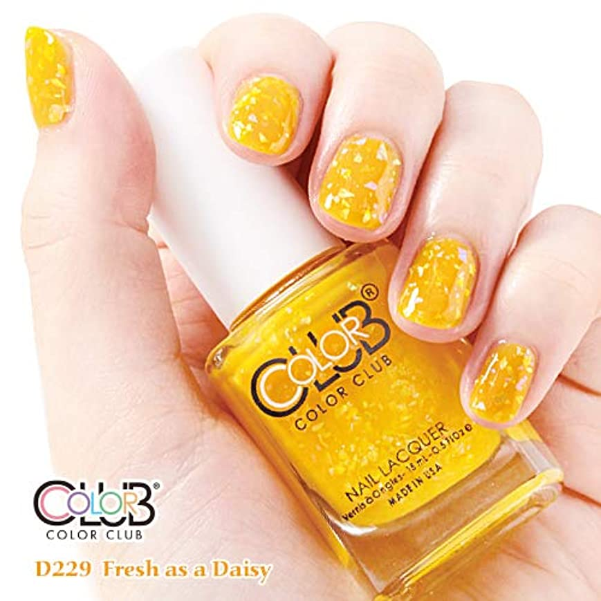 不正確エトナ山コンパクトforsythe COLOR CLUB フォーサイス カラークラブ D229/Fresh as a Daisy