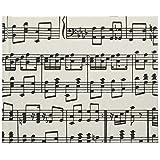 ナカバヤシ Caspari カスパリ ブックタイプアルバム 100年台紙 ミニサイズ 音符 ミニB-100-012-49