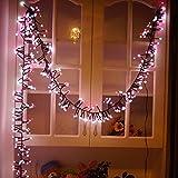 YUEGANG LED Double Color Firecracker Intdoor Lights 400 Bulbs (9.8ft) Waterproof Decorative Lights For Outdoor Indoor Garden Patio Bedroom Wedding Decorations(Pink White)【クリスマス】【ツリー】 [並行輸入品]