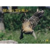 猫だって空を飛ぶ