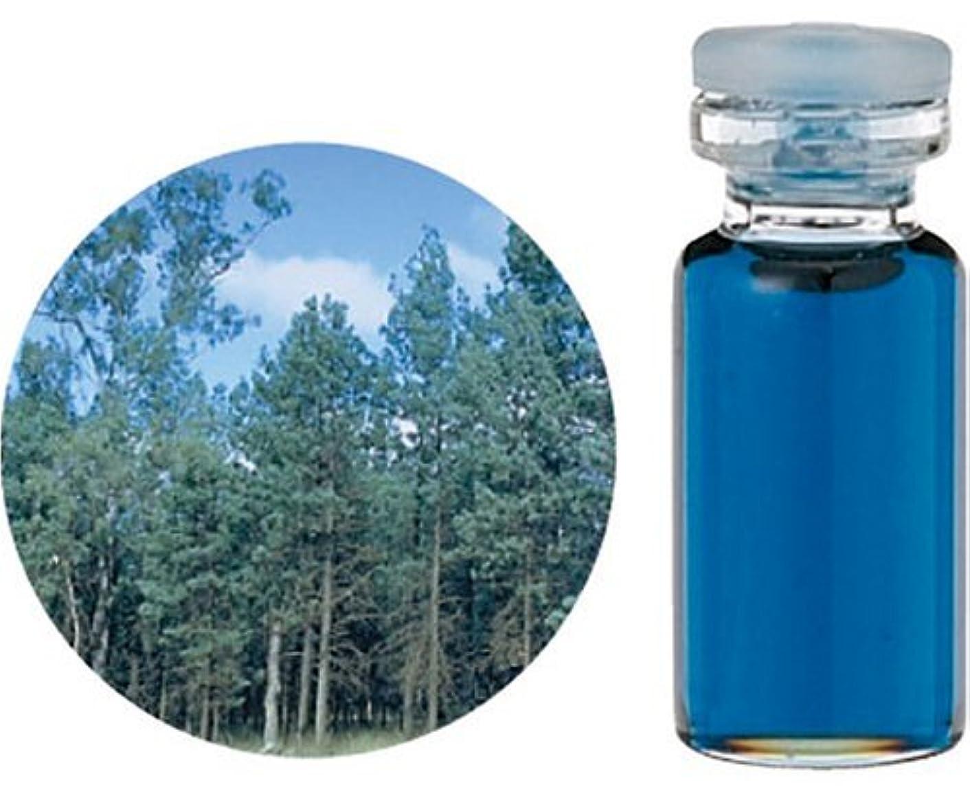 弾性邪悪な金曜日生活の木 C ブルー サイプレス エッセンシャルオイル 3ml オイル