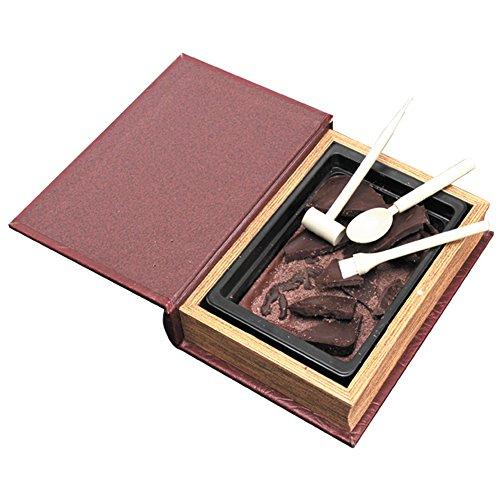 【恐竜発掘チョコレート】<オールドブック仕様>ジュラシックショコラ【ディグアップ】 ★最高級チョコレートを使った、割って!掘って!楽しむチョコレート