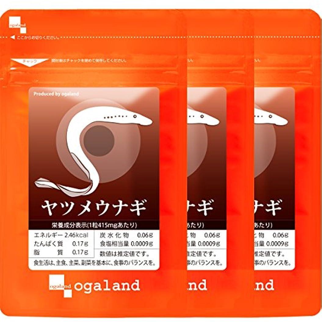 レビュアーシビック付き添い人ヤツメウナギ (90粒/約3ヶ月分)
