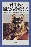 今日もまた猫たちを救う犬 画像