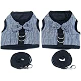 Alfie Pet - Naila 2-Piece Set Harness and Leash Set for Small Animals Like Guinea Pigs and Rabbits - Size: Large