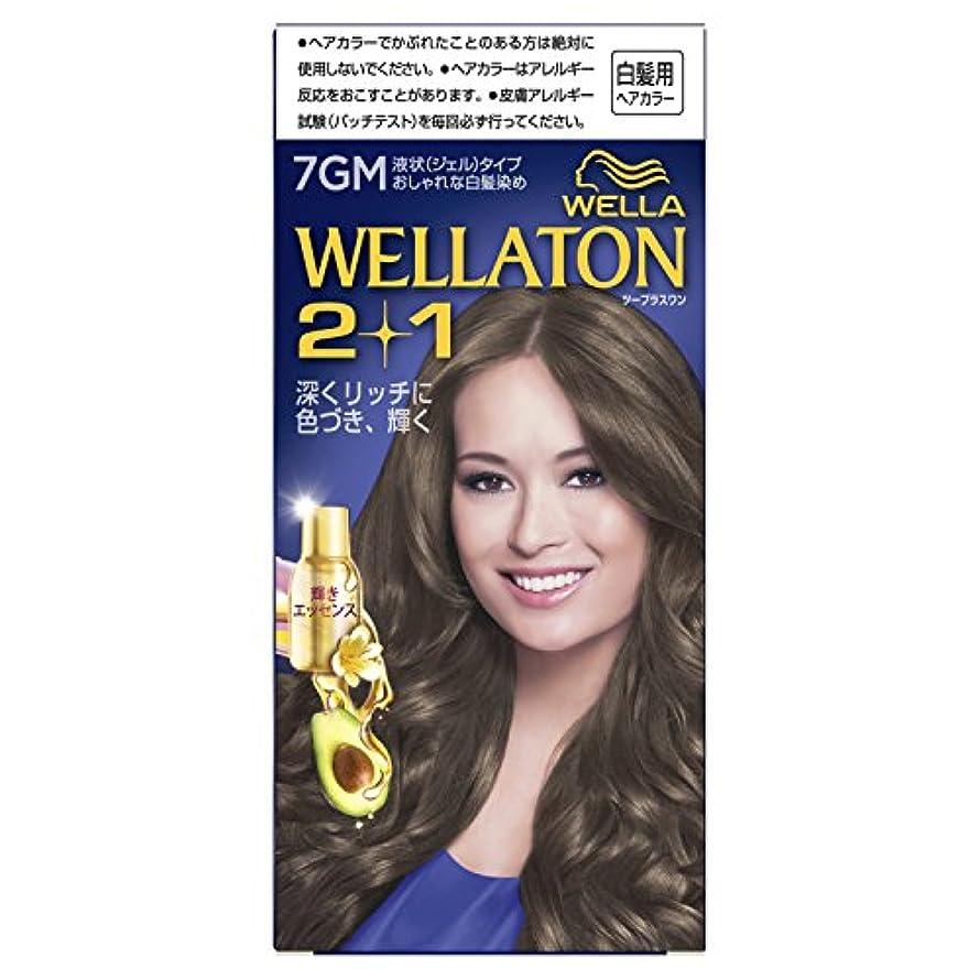 舗装する承認する破産ウエラトーン2+1 液状タイプ 7GM [医薬部外品](おしゃれな白髪染め)