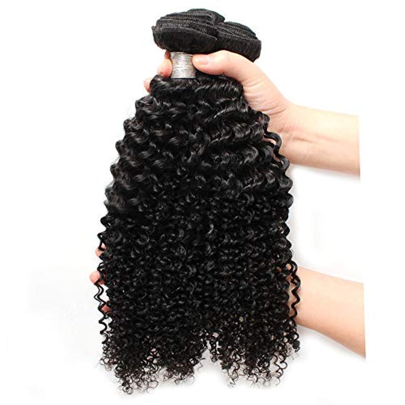 バランス重々しいアベニューWASAIO ブラジルの髪の女性生物鮮やかさ12のための閉鎖ボディカーリーとの同梱バージン拡張バンドル人間織り「-26」 (色 : 黒, サイズ : 18 inch)