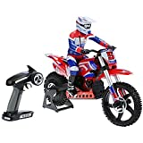 Goolsky SKYRC SR5 1:4 Scale Dirt Bike Super Stabilizing Electric RC Motorcycle Brushless RTR RC Toys [並行輸入品]