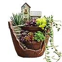 【Alimama】 多肉植物 プランター 収納ボックス カクタス 盆栽 植木鉢 置物 (ヨーロッパの小町)