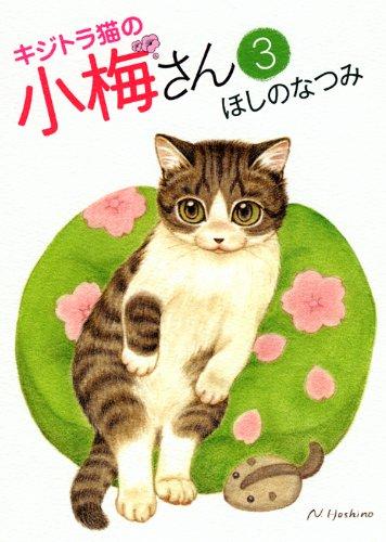 キジトラ猫の小梅さん 3 (ねこぱんちコミックス)の詳細を見る
