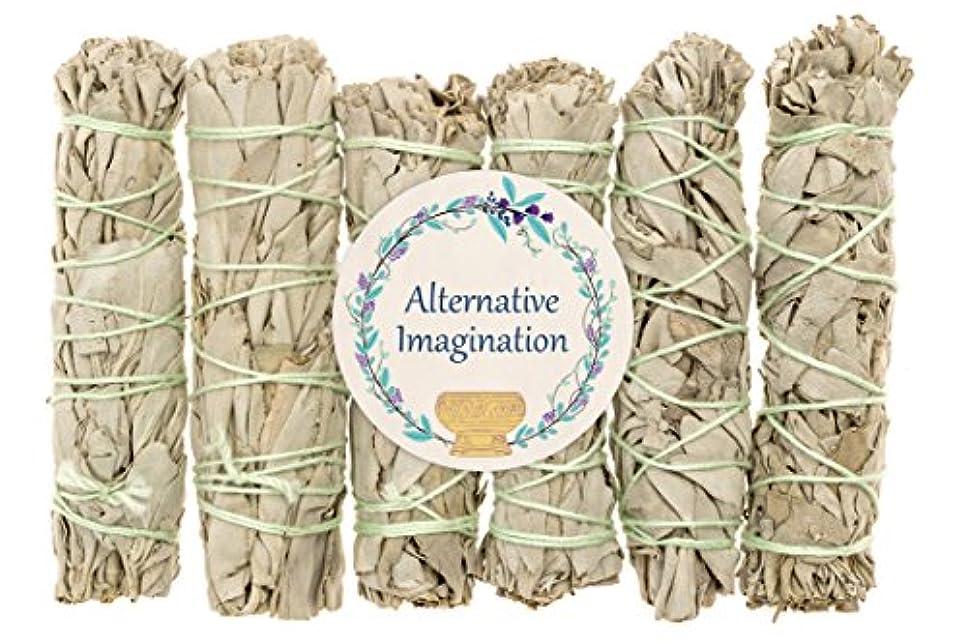 スペルテロリストブレークプレミアムカリフォルニアホワイトセージ4インチSmudge Sticks。Alternative想像力ブランド。 6 Pack COMINHKG096200