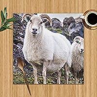 6個ダイニングテーブル用のランチョンマットアイスランドの羊自然アイスランドの公園屋外プリントテーブルマット洗える耐熱性
