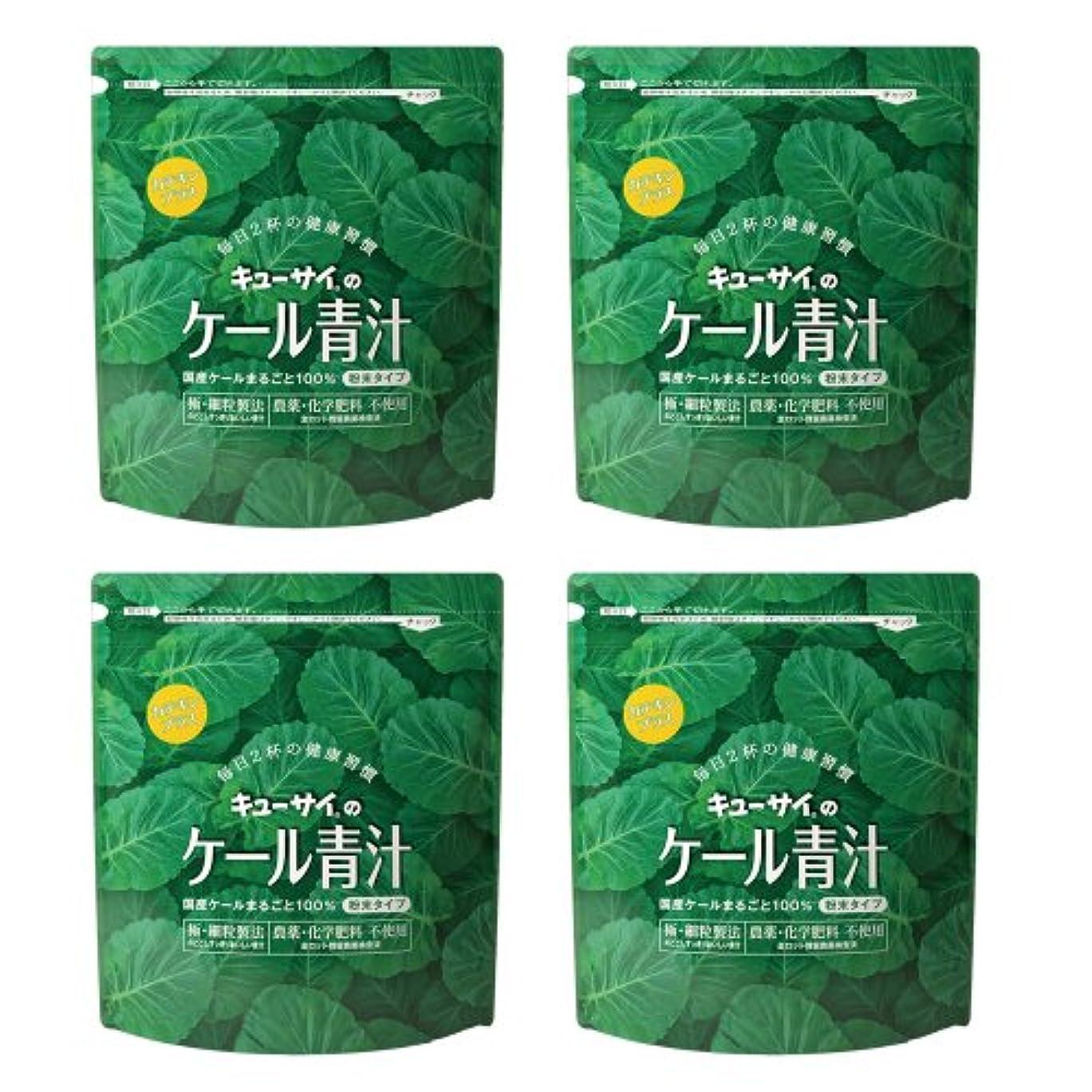 賃金叙情的な州キューサイ青汁カテキンプラス420g(粉末タイプ)4袋まとめ買い【1袋420g(約1カ月分)】