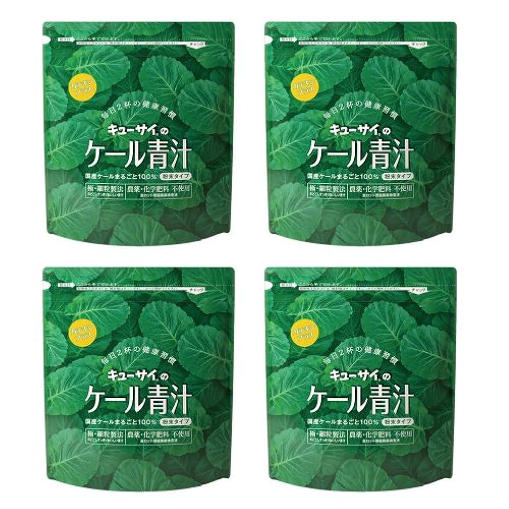 雨のプロフェッショナル進化するキューサイ青汁カテキンプラス420g(粉末タイプ)4袋まとめ買い【1袋420g(約1カ月分)】