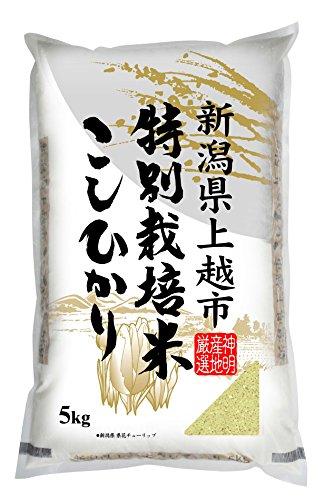 【精米】新潟県上越市産 特別栽培米白米 こしひかり 5kg ...