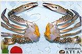 切りわたり蟹ハーフカット Mサイズ1kg×1箱
