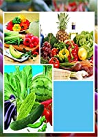 赤:発売中!100野菜の種子10種類のマルチカラー野菜の種子高発芽Diyガレン多年生植物の種子