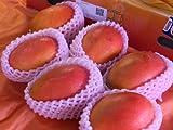 フルーツyamakiti 台湾マンゴー 2キロ(6ー7玉入)