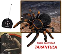 Remote Control Tarantula Spider Toy - Halloween Prank Holiday Gift - Play kreative [並行輸入品]