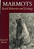 Marmot Marmots: Social Behavior and Ecology