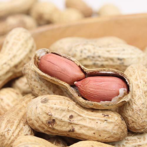 満天☆青空レストランで紹介! Qなっつ 約150g 3袋 千葉産 ピーナッツ 落花生 キューナッツ 新品種