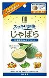 スッキリ爽快 じゃばら サプリメント 2g×10包 ニホンドウ(薬日本堂)