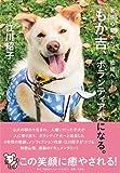 家族の愛犬から、地域へ―― もか吉、ボランティア犬になる。 画像