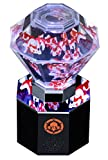アートアクアリウム プリズリウムF18 サラサリュウキンver.