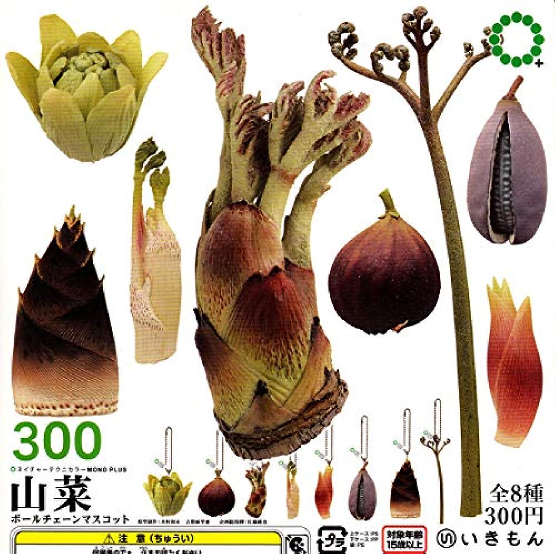 ネイチャーテクニカラーMONO PLUS 山菜 ボールチェーンマスコット [全8種セット(フルコンプ)]