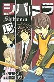 シバトラ(13) (講談社コミックス)