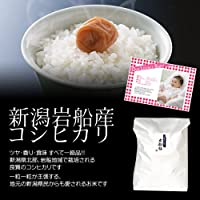 【出産内祝い】赤ちゃんの写真・オリジナルメッセージカード付き!内祝い米・新潟岩船産コシヒカリ 5kg